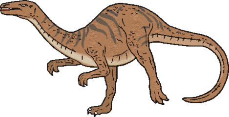 dinosaur picture coelophysis