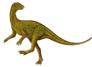 Pisanosaurus dinosaur facts information about the dinosaur