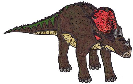 Avaceratops picture 2