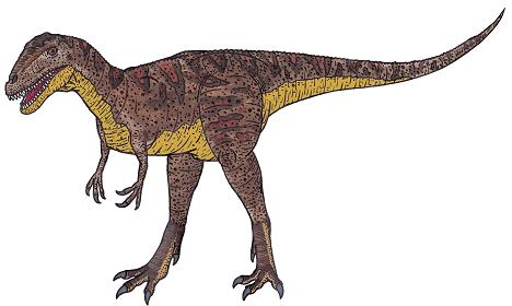 Carcharodontosaurus Dinosaur Facts Information About The Dinosaur