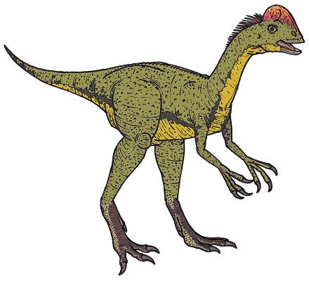 dinosaur picture chirostenotes