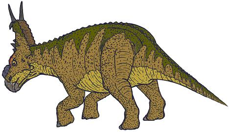 pachyrhinosaurus  ... pachyrhinosaurus dinosaur jungle dinosaur