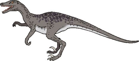 the characteristics of the velociraptor a type of dinosaur Check out our list of dinosaur kinds for kids which includes some of the most well known types of dinosaurs dinosaurs such as tyrannosaurus rex and velociraptor.