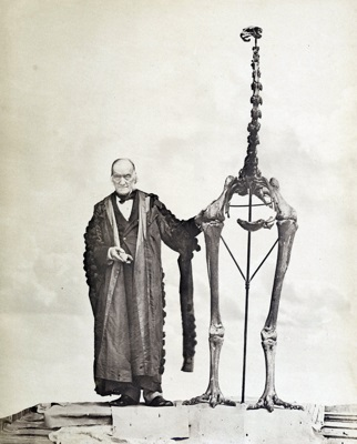 Sir Richard Owen with the skeleton of an extinct Moa